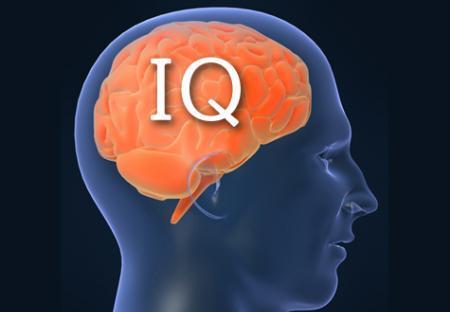ორ კვირაზე მეტ ხანს დაისვენა, IQ-ს 20 პუნქტით ამცირებს