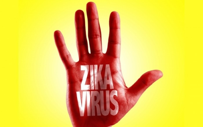"""დაავადებათა კონტროლის ცენტრი საქართველოში ,,ზიკას"""" ვირუსის საფრთხეზე გავრცელებულ ინფორმაციას ეხმაურება"""