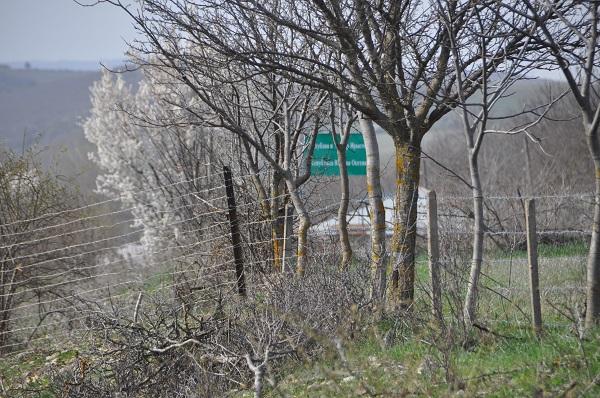 რუსმა ოკუპანტებმა სოფელ კირბალიდან ადგილობრივი მკვიდრი გაიტაცეს