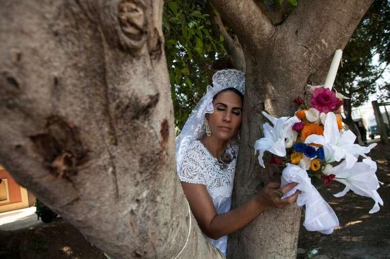ხის გადასარჩენად ქალმა მასზე იქორწინა