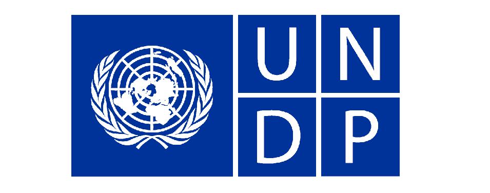 UNDP და შვედეთის მთავრობა ქალთა ეკონომიკური გაძლიერებისაკენ მიმართულ კამპანიას იწყებენ
