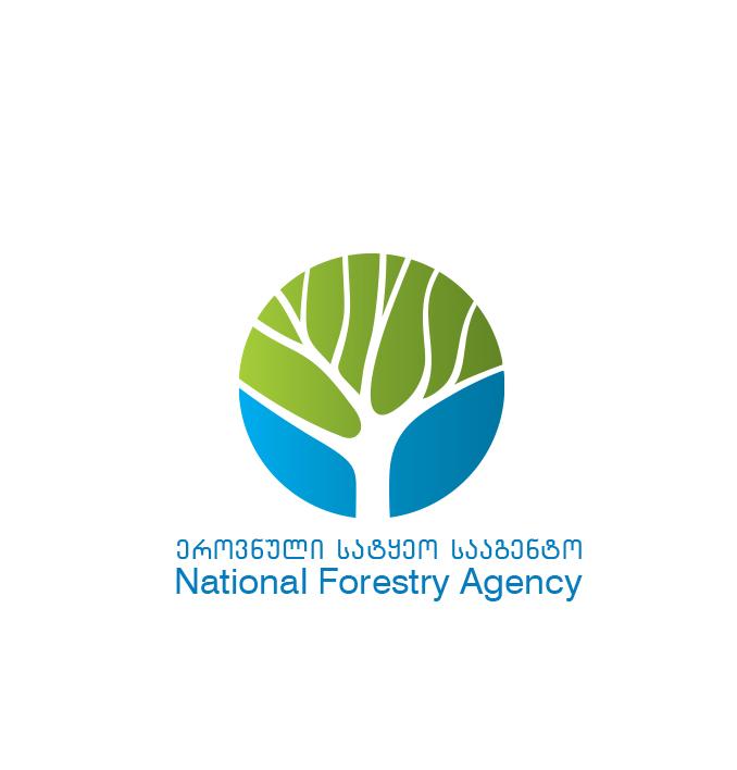 გარემოს დაცვისა და სოფლის მეურნეობის სამინისტრო ბორჯომის ხეობაში, ხანძრით დაზიანებული  ტყის  აღდგენით სამუშაოებს  იწყებს