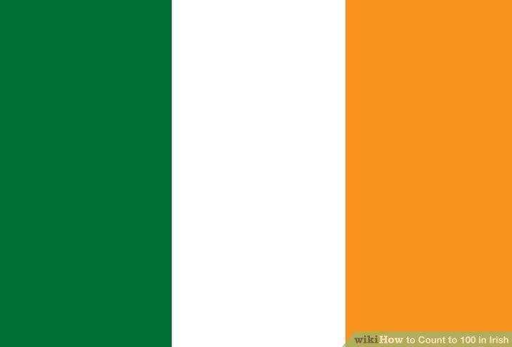 არც თუ ისე შორეულ მომავალში, ჩვენ ვიხილავთ საქართველოს ტერიტორიებს გამთლიანებულს - ირლანდიელი სენატორი