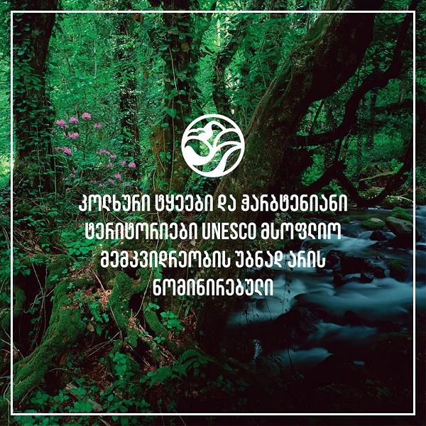კოლხური ტყეები და ჭარბტენიანი ტერიტორიები UNESCO-ს მსოფლიო ბუნებრივი მემკვიდრეობის ნომინაციაზეა წარდგენილი