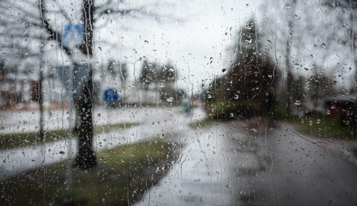17-18 მარტს საქართველოში მოსალოდნელია წვიმა