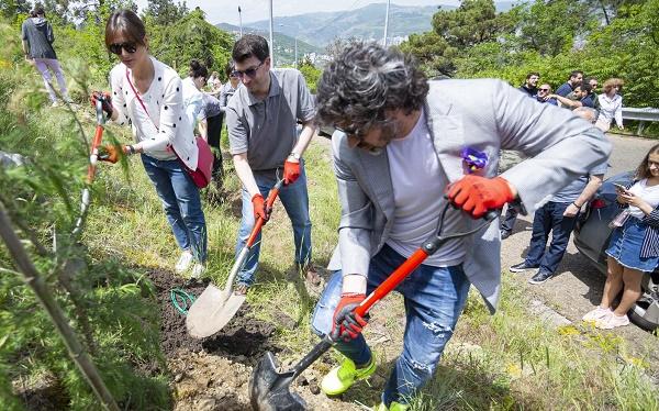 კუს ტბის მიმდებარე ფერდობის გამწვანება დაიწყო