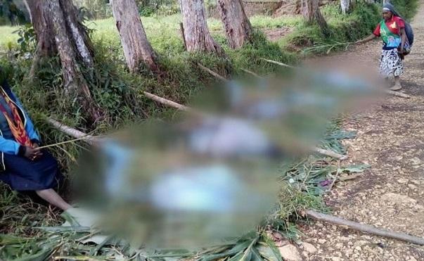 24 ადამიანი, მათ შორის ბავშვები და ორსულები, პაპუა ახალ გვინეაში ადგილობრივმა ტომებმა მსხვერპლად შესწირეს