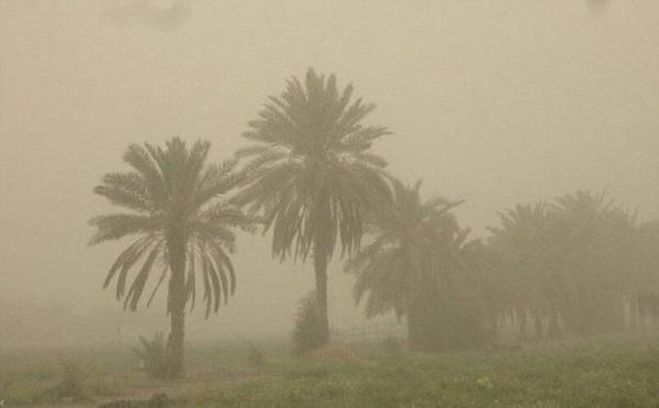 ირანში ქვიშის ქარიშხალი მძვინვარებს