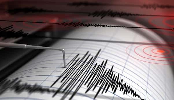 ტაივანში 6.0 მაგნიტუდის მიწისძვრა მოხდა, შემთხვევა კატების სათვალთვალო კამერამ დააფიქსირა | ვიდეო
