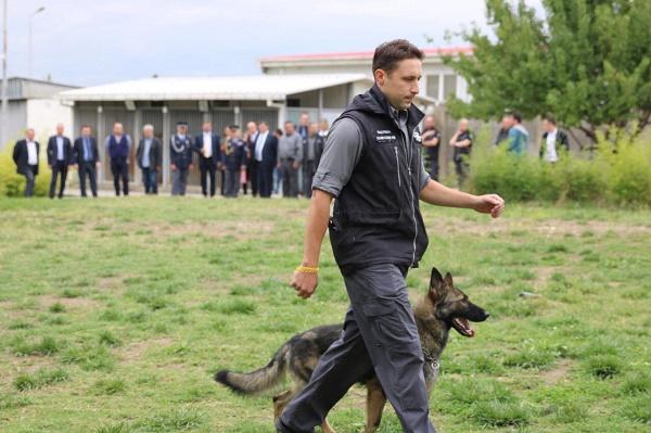 ჩეხეთის საბაჟო ადმინისტრაციის წარმომადგენლები შემოსავლების სამსახურის სამსახურებრივი ძაღლების მიერ საეჭვო ნივთების აღმოჩენის წვრთნის პროცესს დაესწრნენ