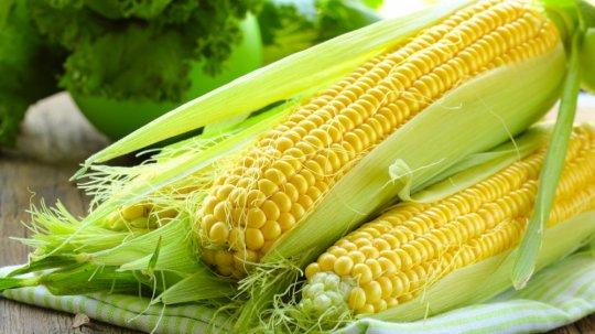 Made in Georgia - ევროკავშირისა და FAO-ს მხარდაჭერით ადგილობრივი ფერმერის მოყვანილი ტკბილი სიმინდი უკვე გაყიდვაია
