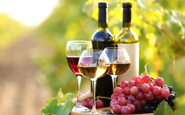 ქართული ღვინო იაპონიაში რაგბის მსოფლიო ჩემპიონატის ფარგლებში დააგემოვნეს