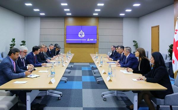შინაგან საქმეთა მინისტრი ევროკავშირის წევრი ქვეყნების ელჩებსა და ევროკავშირის დელეგაციის ხელმძღვანელს შეხვდა