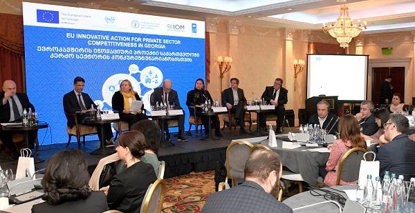 ევროკავშირისა და გაეროს ოთხი სააგენტოს ინოვაციური პროექტი ხელს უწყობს საქართველოს კერძო სექტორის კონკურენტუნარიანობის გაზრდას