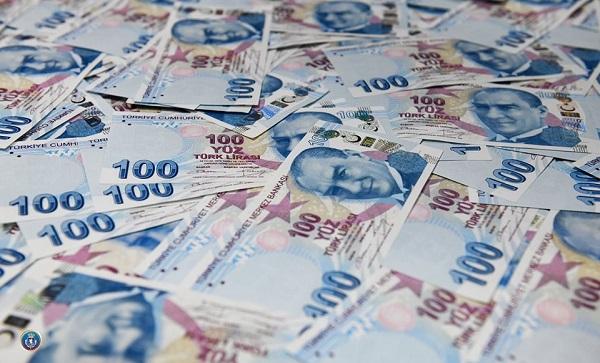 დიდი ოდენობით ყალბი ფულის გასაღების ფაქტზე, თურქეთის რესპუბლიკის მოქალაქე დააკავეს