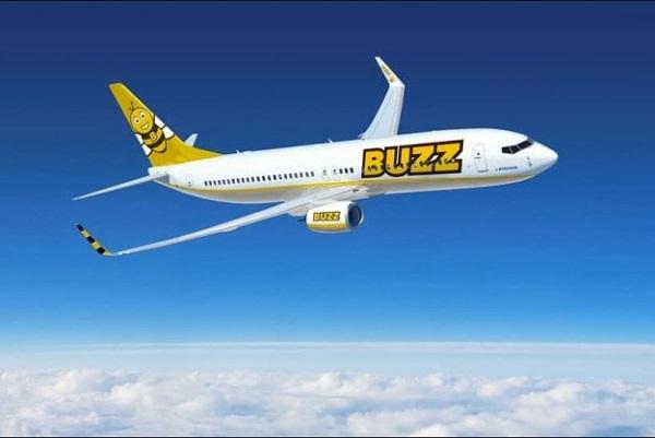 Ryanair-ისშვილობილი ავიაკომპანია ფუტკრის შეფერილობას მიიღებს