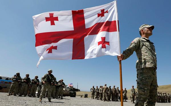 ქართული ჯარის კვების კონტროლს სურსათის ეროვნული სააგენტო აქტიურად განახორციელებს