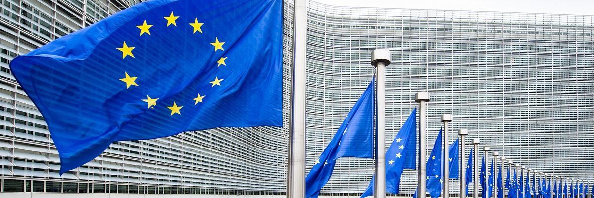 """""""ერთიანობა მრავალფეროვანებაში"""" - ყველაფერი რაც ევროკავშირის შესახებ უნდა ვიცოდეთ"""