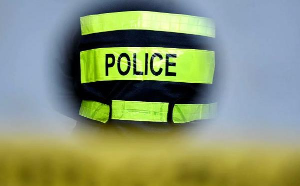 პოლიციამ კახეთში არასრულწლოვანი გოგონასთვის თავისუფლების უკანონო აღკვეთის ბრალდებით ორი პირი დააკავა
