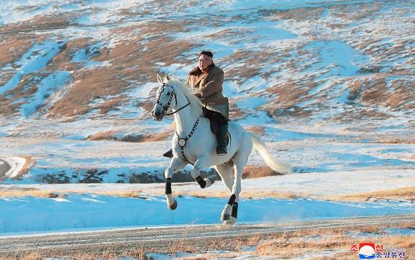 კიმ ჩენ ინმა რუსეთისგან 12 ცხენი 75 509 დოლარად იყიდა