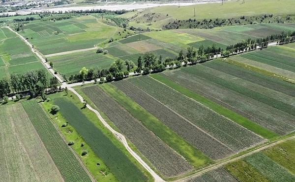2019 წელს ხელისუფლებამ მართლმადიდებელ ეკლესიას 100 670 კვადრატული მეტრი მიწის ნაკვეთი გადასცა