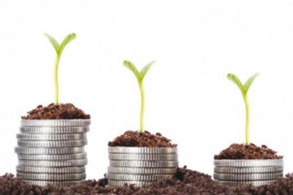 ფერმერების 40%-მა ბანკის მიერ შეთავაზებული სესხის გადავადებით ისარგებლა