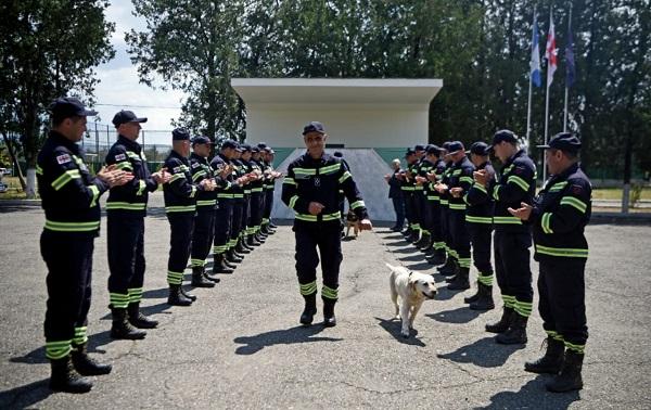 მაშველი ძაღლები ფანი, ჯესი, ბელა, სალი, ბინგო და რეი სამსახურიდან გააცილეს | ფოტოები