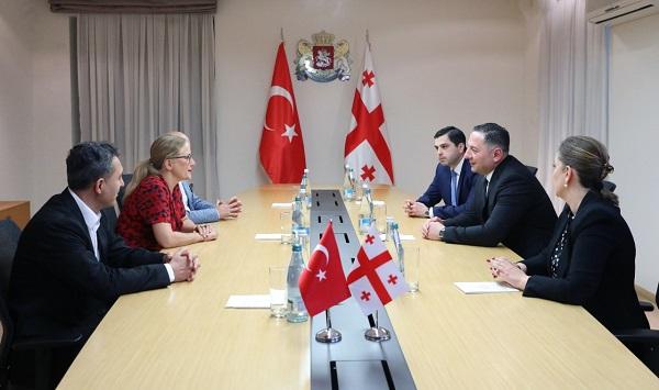 ვახტანგ გომელაური თურქეთის რესპუბლიკის ელჩს შეხვდა