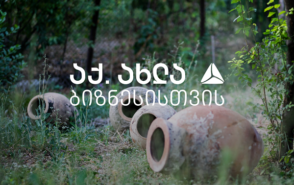 """""""ჯუსოს მეღვინეობამ"""" თიბისის მხარდაჭერით სოფელ შილდაში ვენახები გააშენა"""