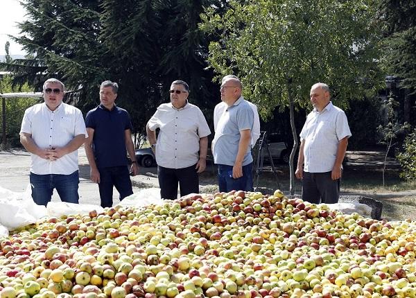 არასტანდარტული ვაშლის რეალიზაციის ხელშეწყობის პროგრამა აქტიურად მიმდინარეობს
