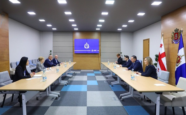 შს მინისტრი ეუთოს დემოკრატიული ინსტიტუტებისა და ადამიანის უფლებების ოფისის სადამკვირვებლო მისიის ხელმძღვანელს შეხვდა