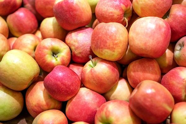 საქართველოდან  2 514 ტონა ვაშლი ექსპორტირდა