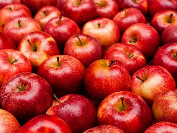 21 თებერვლამდე ვაშლის ექსპორტის ღირებულებამ 5.6 მლნ აშშ დოლარი შეადგინა