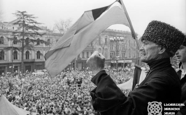 საქართველოს დამოუკიდებლობის აღდგენიდან 30 წელი გავიდა