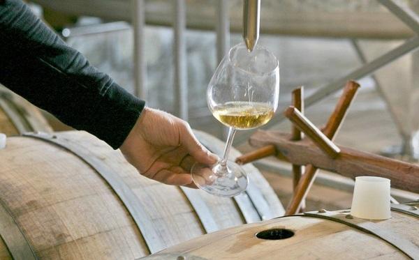 საფრანგეთის გასტრონომიულ ფესტივალზე ქართული ღვინო იქნება წარმოდგენილი