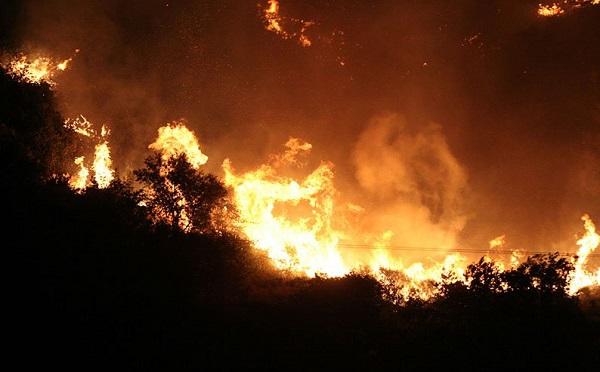 კვიპროსში ტყის ხანძრები მძვინვარებს - ქვეყანა დახმარებისთვის საერთაშორისო საზოგადოებას მიმართავს