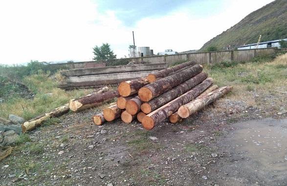 ხე-ტყის უკანონო ტრანსპორტირების 7 ფაქტი გამოავლინეს