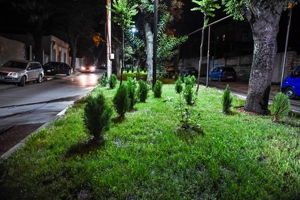 ნაძალადევის რაიონში, ურიდიას ქუჩის გზაგამყოფი რეაბილიტირდა და გამწვანება მოეწყო