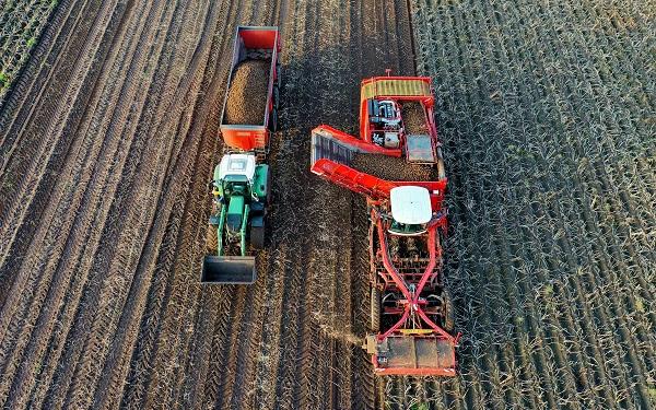 რა დახმარებას მიიღებენ ფერმერები სახელმწიფოსგან - განმარტება